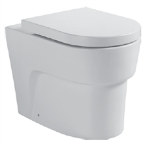 TOILET SUITE HEART ECONOFLUSH INCL DF SC SEAT & STND CNCTR (BUTTON SOLD SEPERATELY)