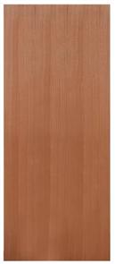 DOOR SCX1 SOLICORE SPM