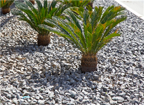 WJS CRUSHED STONE AGGREGATE - DECORATIVE