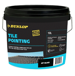 DUNLOP TILE POINTING 10LTR