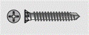 CSR (CEMINTEL) SCREWS M4.8G 18X30MM FIBRETEK CL4 (LOOSE) 1000PK
