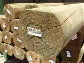 LOG CCA TREATED H4 SLAB (ex 150) 125