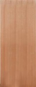 DOOR SOLICORE SPM (STAIN GRADE)